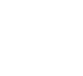Bonafide Insights   San Diego Marketing Strategy